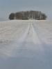 Winter-10.05