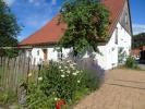 Garten_17.02